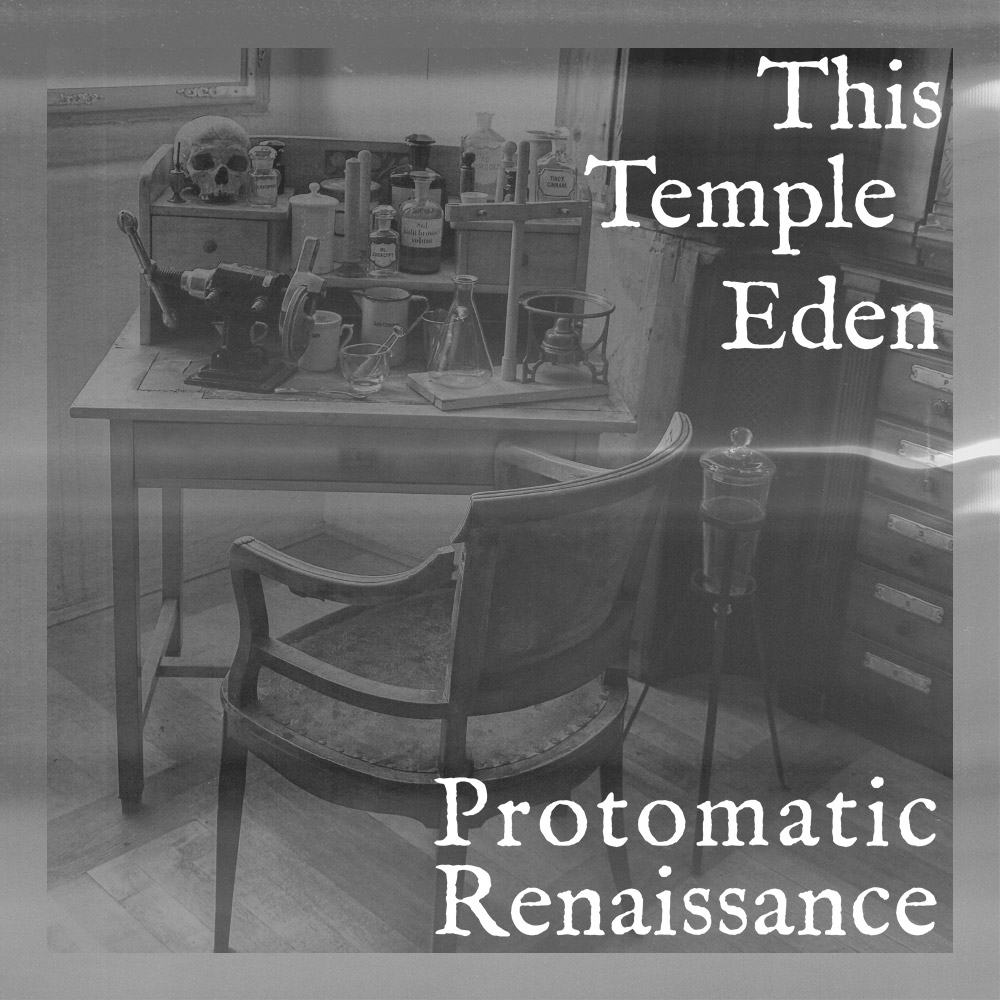 Protomatic Renaissance single cover